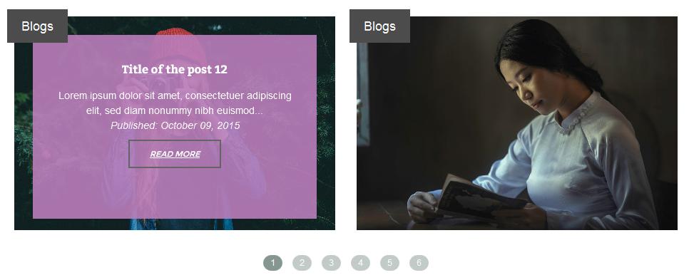 VG PostCarousel - Post Carousel for WordPress 15